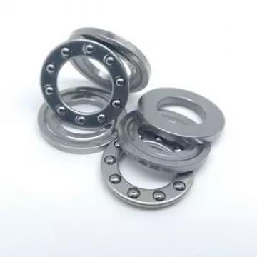 3.346 Inch | 85 Millimeter x 7.087 Inch | 180 Millimeter x 1.614 Inch | 41 Millimeter  NACHI N317MY C3  Cylindrical Roller Bearings